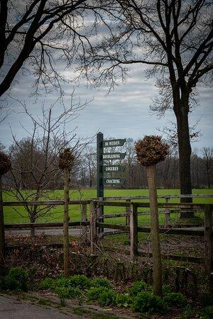 Beltrum, Países Bajos: Foto's gemaakt door Bianca de Warle