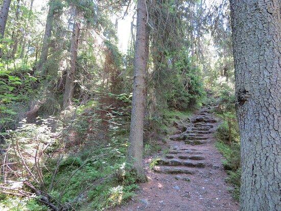 Konevets Island, Ρωσία: Лестница на Змеиную гору