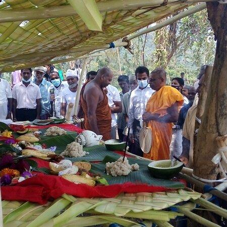 Rice festival  in Sri Lanka