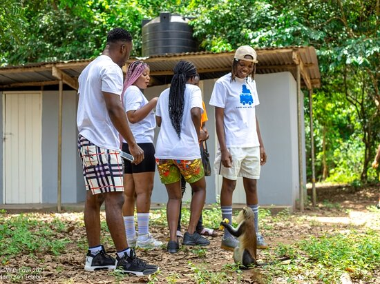 It was a beautiful experience at the Tafi atome monkey sanctuary ♥