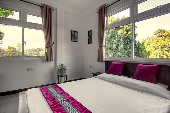 Superior room view