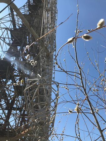 Full-Day Tour of Chernobyl and Prypiat from Kyiv Photo