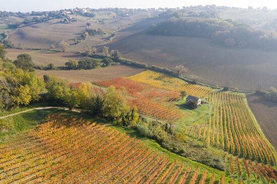 Senigallia, Italie : Drone's picture