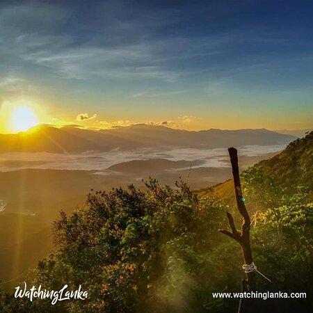 Sri Lanka: Visit More -  https://www.watchinglanka.com/ambokka-mountain/
