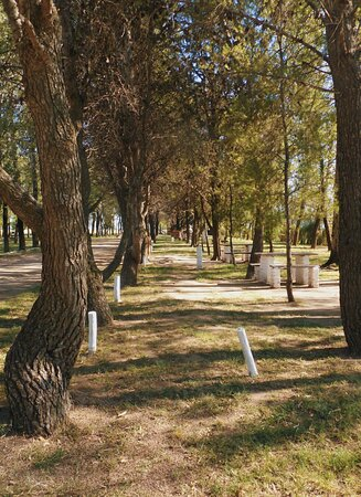Eduardo Castex, Argentina: Polideportivo Municipal. Sobre la RN 35.  La Pampa. Patagonia Argentina