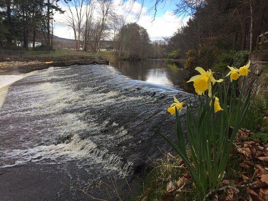 River Averon (alness River)