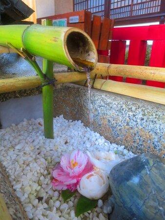 綺麗な花手水