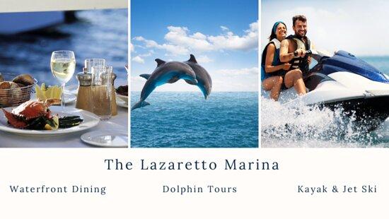 Captain Mike's Dolphin Tours