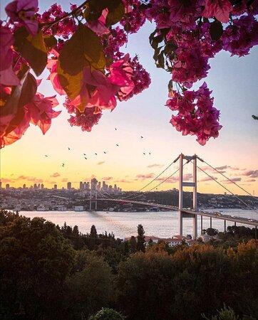 İstanbul - TURKEY 📸@abdullahshhn