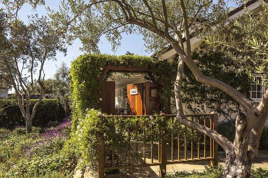 Acacia Entry - Wildflower Garden Cottage