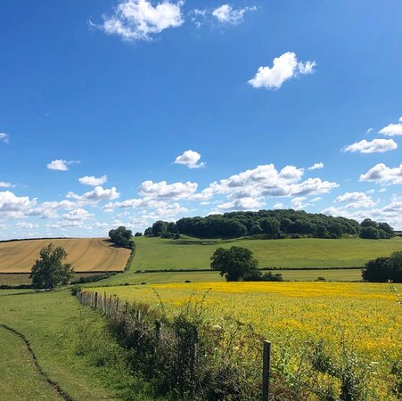 Tolpuddle and Weatherby Castle walk