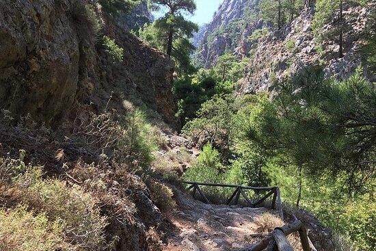 Excursion d'une journée à la gorge d'Agia Irini
