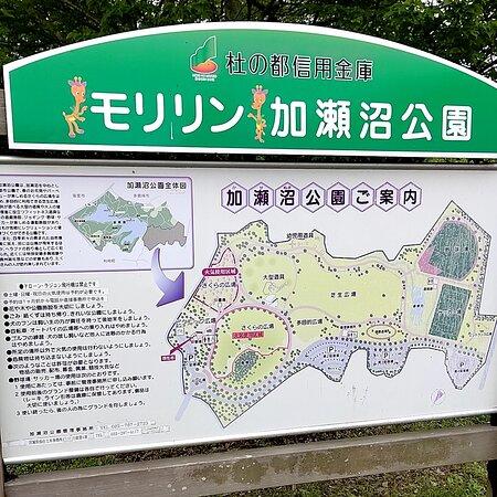 Kasenuma Park