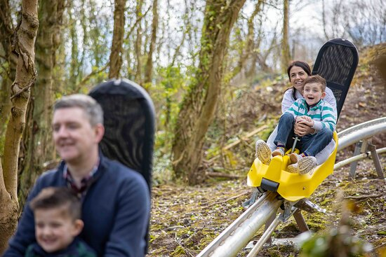 Lisburn, UK: We can't wait to welcome you to The Black Bull Run, Ireland's first and only Alpine Coaster.  Who wants to hurtle through Colin Glen Forest on our coaster? Twisting and turning, downhill and up, through tunnels and in and out of the trees – while you control the speed on this wonderful woodland course.   Opening Summer 2021.