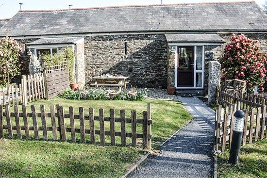 Enclosed garden in Fowey Cottage