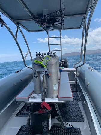 FunDive Catalina Islands (2 dives only for Certified divers): Brand new boat