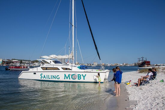 Sailing Moby Adventures