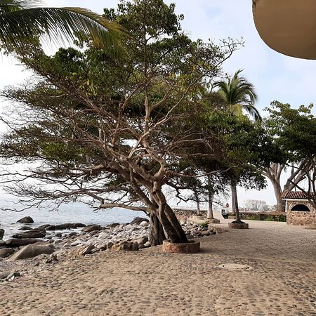 Playa Conchas Chinas