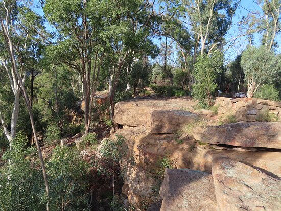 Whitegum Lookout