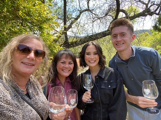 Small-Group Wine-Tasting Tour through Napa Valley: our group (all family)!