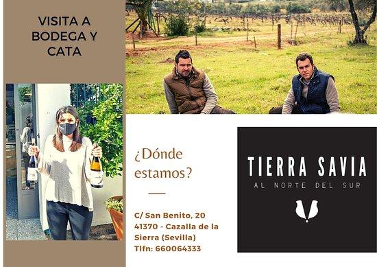Visita y Cata en Bodegas Tierra Savia