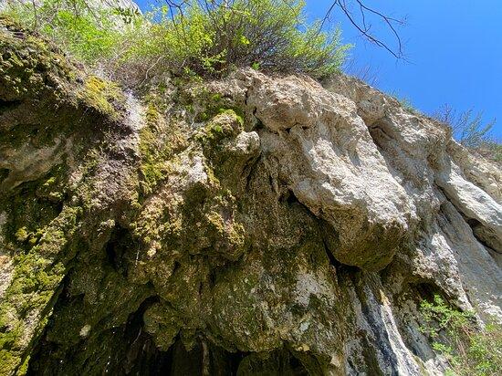 """""""gaura Cu Musca"""" Cave."""