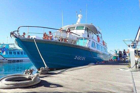 Fuerteventura: Viaje ida/vuelta en...