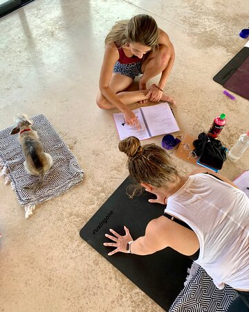 200hr Aligned Flow Method Yoga Teacher Training in Tulum, Mexico. Immerse in the study of yoga. Inclusive and accessible. Go to our website for upcoming dates and information.