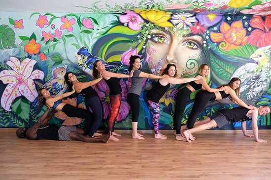 Flying Tree Yoga Studio