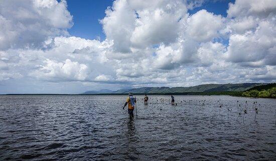Ngana Julaymba Dungay - Full Day: Hunting for kiju.