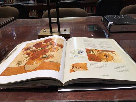 Biblioteca Octavio Paz