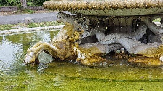 Fontana dei Cavalli Marini 5