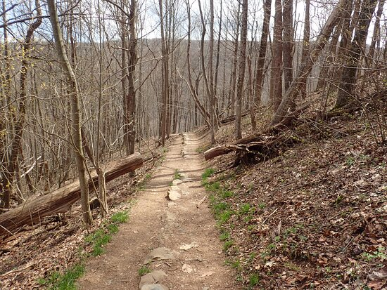 Trail surface