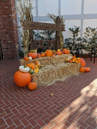 Side view of the Pumpkin display in the Forecourt of the Hotel Corque.