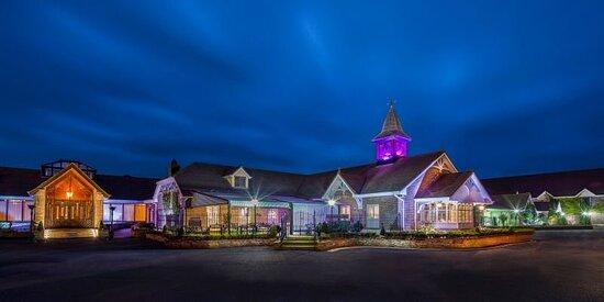 Treacys Oakwood Hotel, Hotels in Adare
