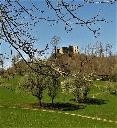 """Ebringen, Alemania: Ruine """"Schneeburg""""  kurz vor der Berghauser Kapelle"""