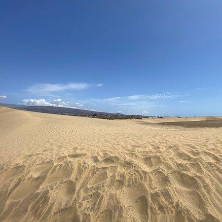 Magnifique balade dans les dunes, on se croirait vraiment au Sahara. Crème solaire et eau vivement recommandé pour ce paradis. Super expérience.
