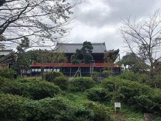 Tsuki no Matsu