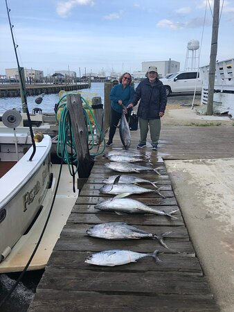 Sportfishing Charters - Tuna, Mahi, Wahoo & More: This was our haul!