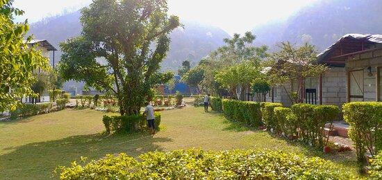 Open garden space