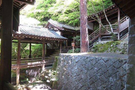 永観堂禅林寺 5