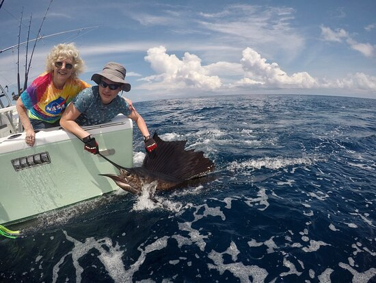Amazing sailfish catch