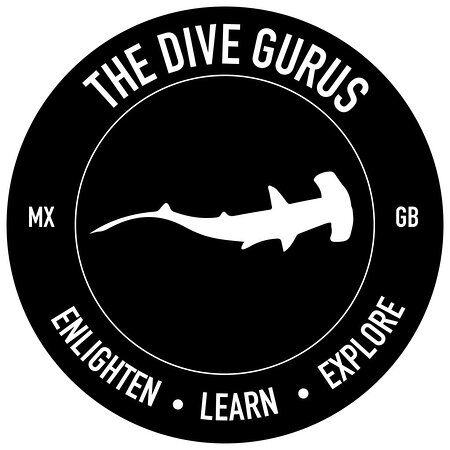 Cortez Expeditions The Dive Gurus