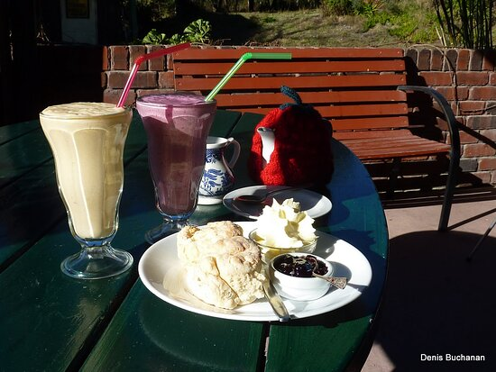 Scamander, Australia: Great smoothies or if you would prefer a traditional Devonshire tea
