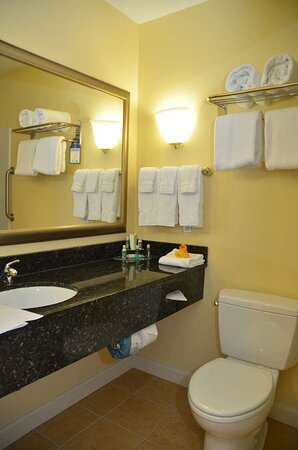 Traditional King Suite Bathroom