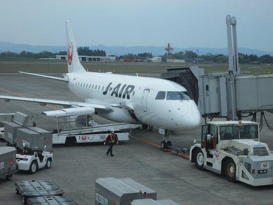 Japan Airlines (JAL): 小型ジェット機ですが快適です