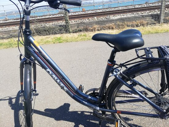 Exe Trail Cycle Hire