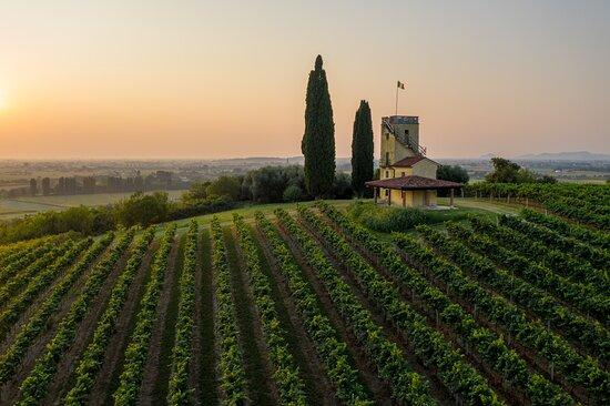 Longare, Italie: Torre Specola all'alba