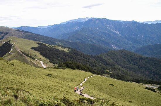 Hehuanshan East Peak Trail