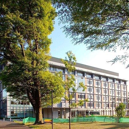 Suginami, Giappone: 南陽園の施設です。 南陽園ではデーサビスセンターとかショートステイーとか 老人ホームとか病院とかその他お庭庭園ないとかもあります。  今回病院とかお庭にはバラ園とかお庭には鯉、亀などなとがこざいます。  ほとんど大きな施設です 良かったら、是非散歩にきてみてね。